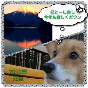 photoshake_1356950969896